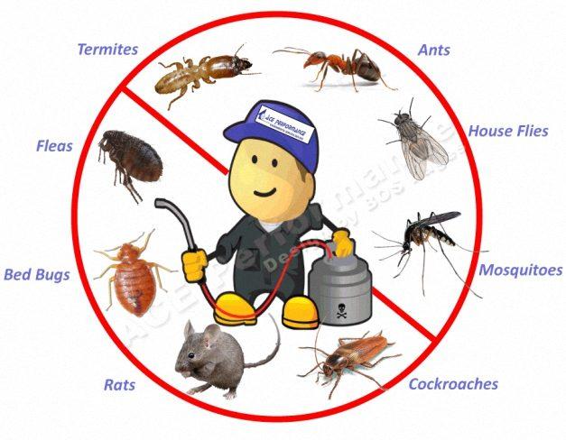 مبيدات وصال e1589577779201