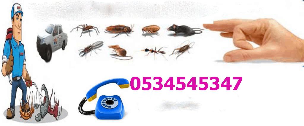 مكافحة حشرات بالرياض 1