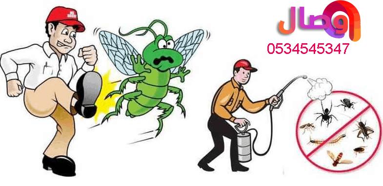 شركة رش مبيدات بالرياض لا