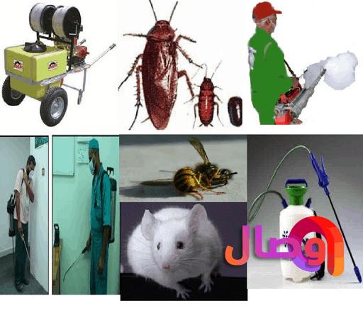 شركة رش مبيدات بالرياض وو